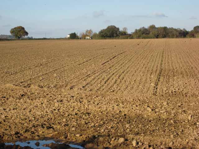 Ploughed field near East Tanfield