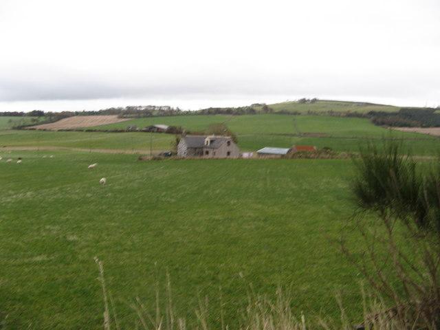 Capercailzie Cottage