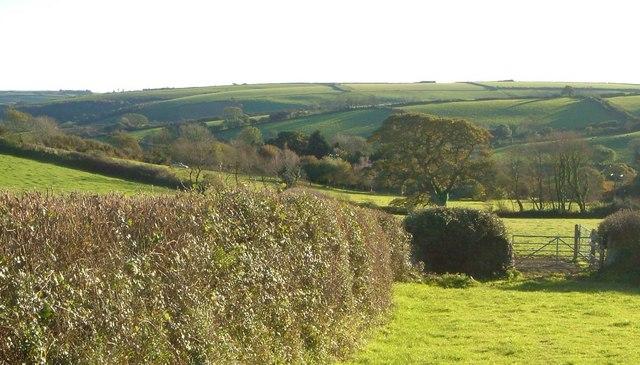 Towards Knighton Coombe