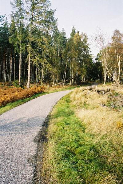 Road near Drummournie