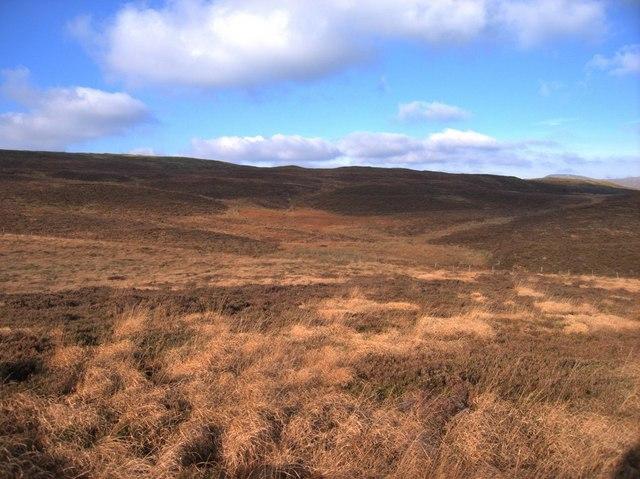 Rough moorland of Draws Drum