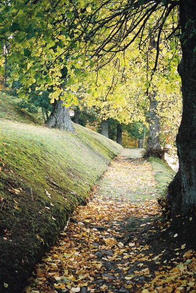 Autumnal path, Tomnahurich Cemetery