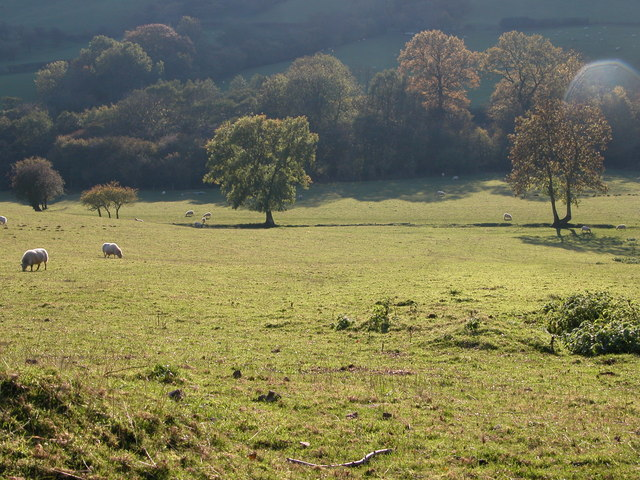 The Vale of Ewyas in afternoon sun