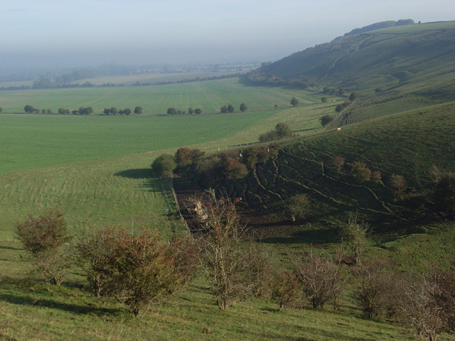 The foot of Botley Down