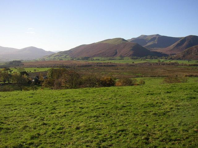 View from Murrah, Berrier and Murrah
