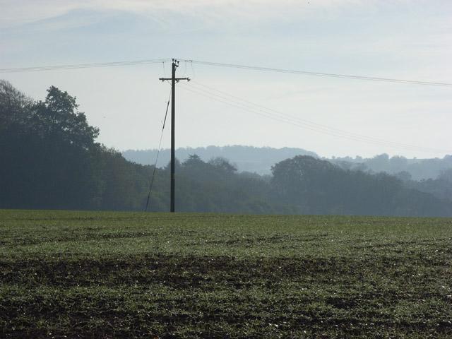 Farmland, Oxenwood