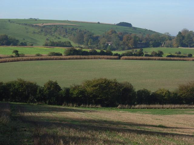 Tidcombe