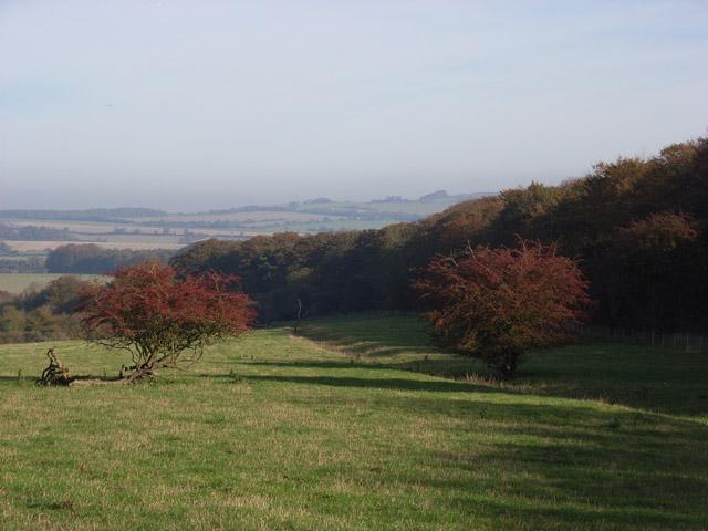 Above Tidcombe