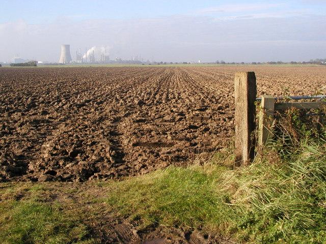 Farmland towards Saltend