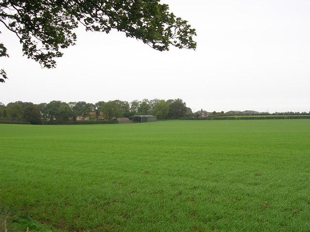 Lincolnshire field
