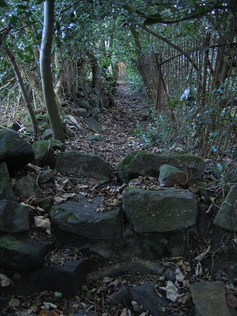 Stone stile and path