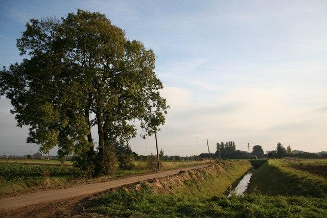 Tydd Road
