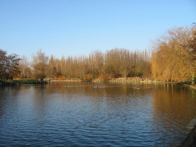Stanborough Boating Lake (North Lake)