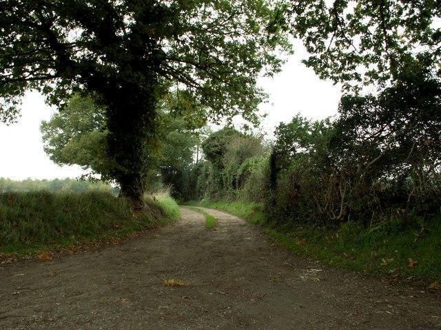 Public Footpath and track to Dewland's Farm
