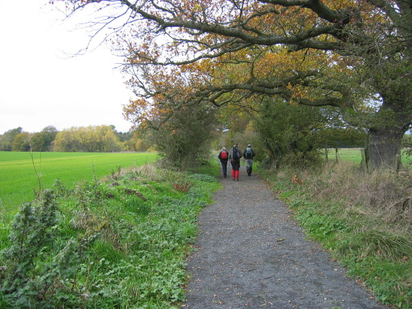 Bridleway leading to Wood House from Nunriding Hall