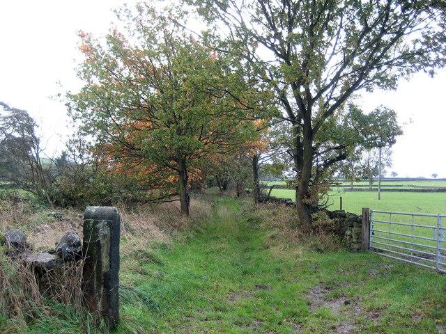 Bridleway, Moke Hill