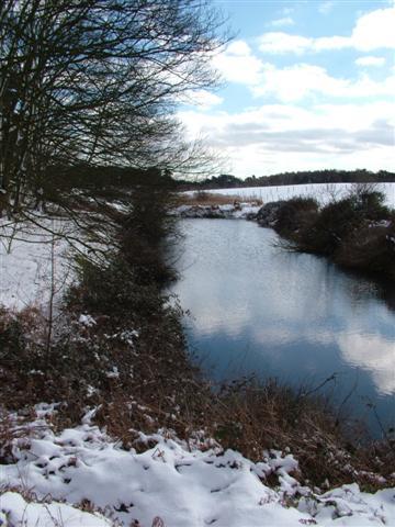 The Decoy, Browston, Norfolk