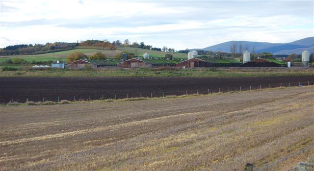 Mawmill Poultry Farm