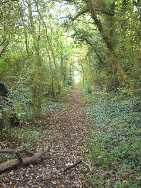 Old Crab and Winkle line