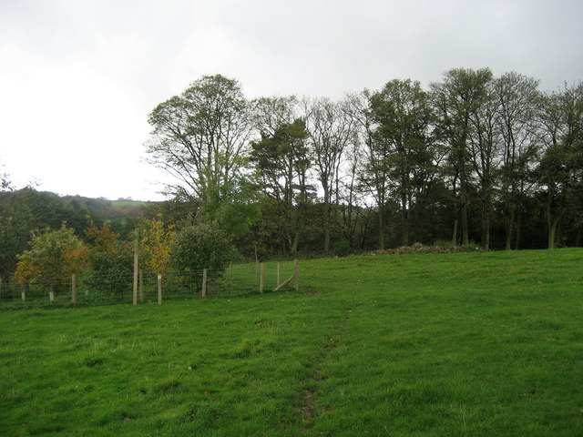 Footpath by Woodfield Farm
