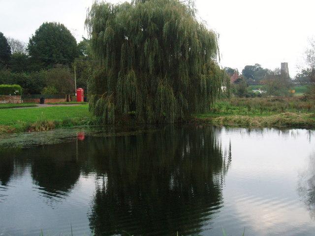 Pond, Shotesham Common