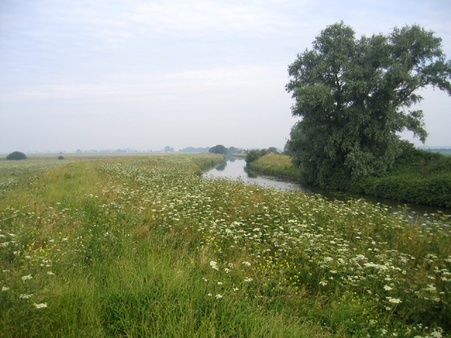 Great Ouse or Old West River, Cottenham, Cambs