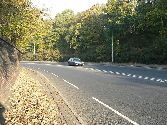 Abbey Road, with autumn leaves