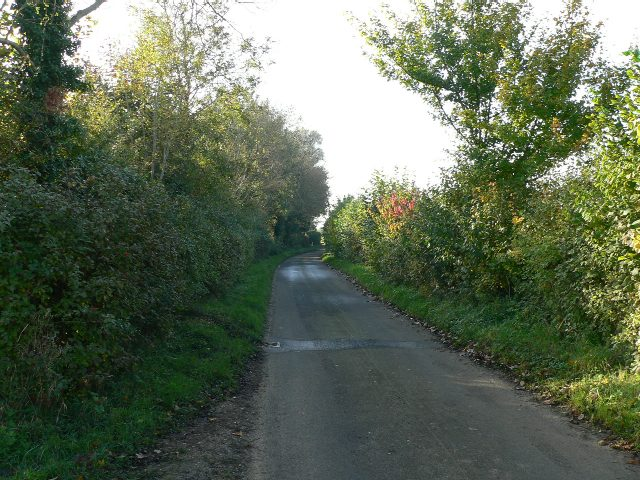 Cuthroat Lane