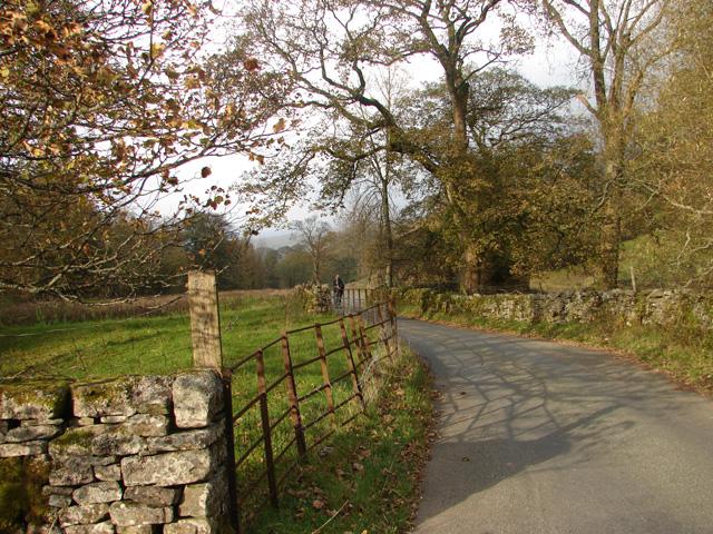 Lane Through Dentdale