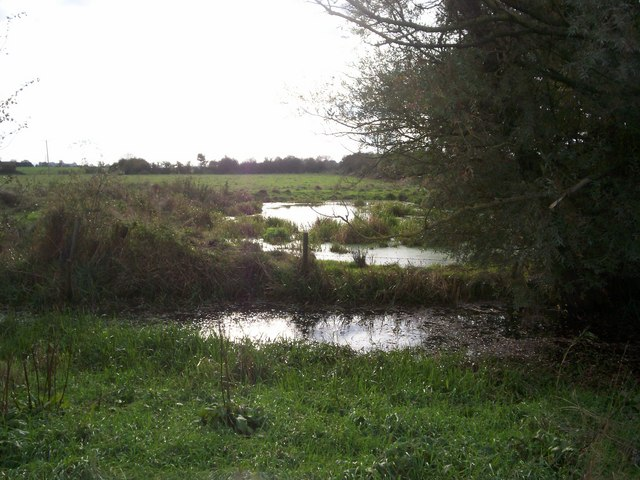 Flooded Ditches between The Leigh and Coombe Hill