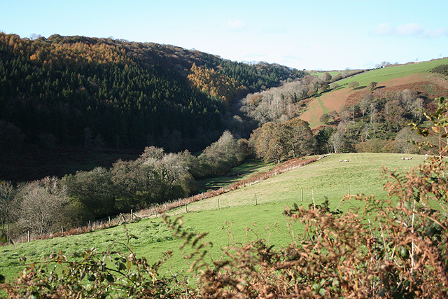 Bratton Fleming: towards Sloley's Wood