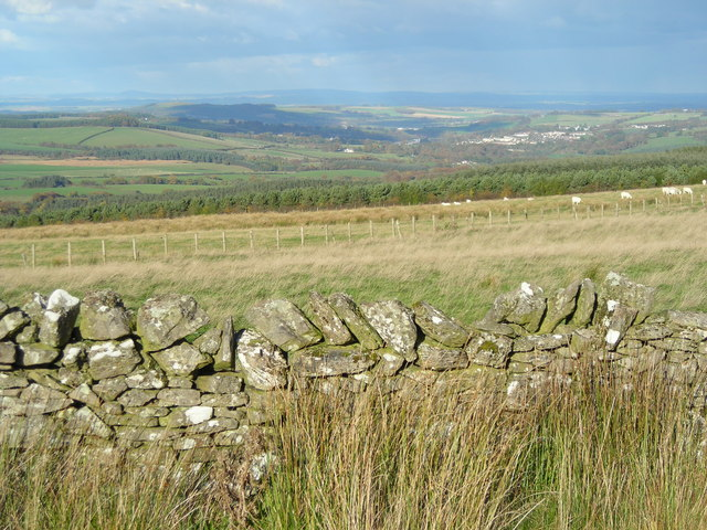 Looking from Faw Hill towards Jedburgh