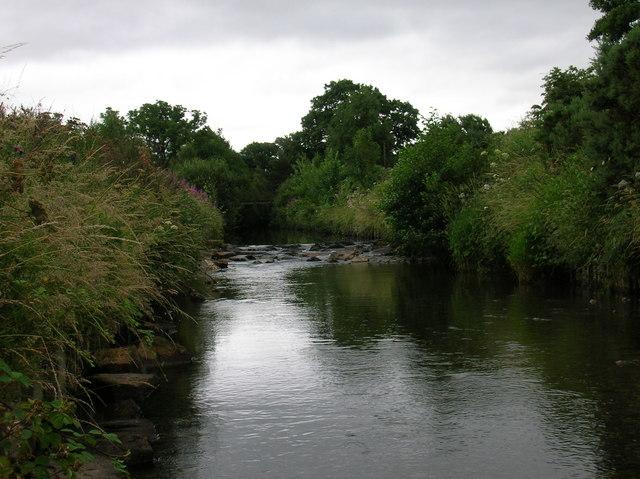 Newlands Beck at Bog House