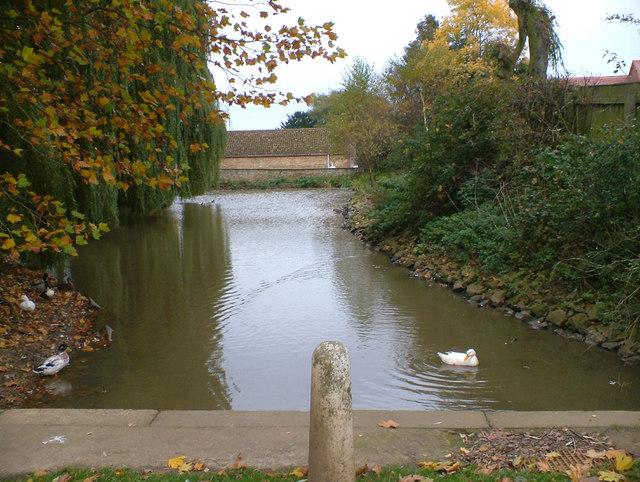 The Pond at Hall Farm