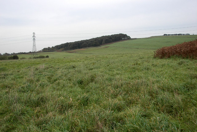 North of Dragonby