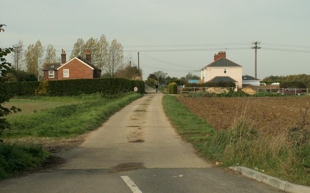 Road to Great Domsey Farm