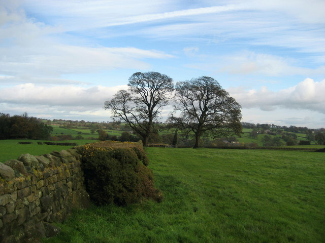 Footpath near Trustee Wood