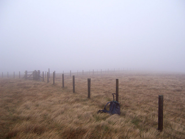 Junction of Fences