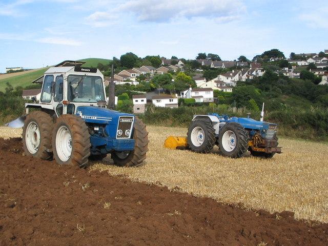 Farming in Salcombe