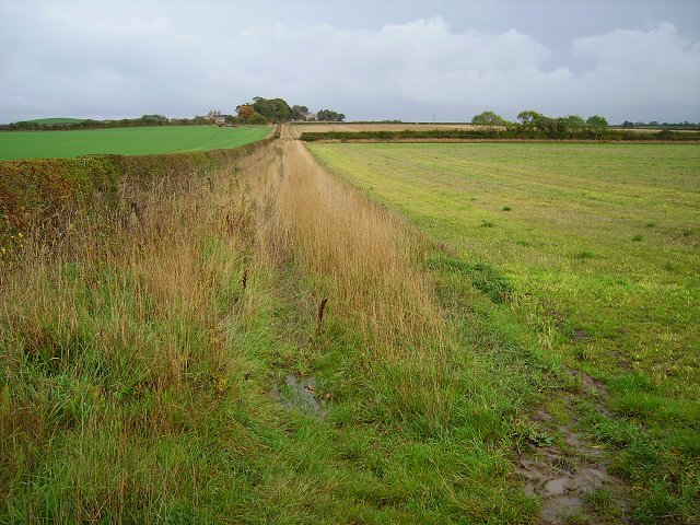 Track to Ramrig