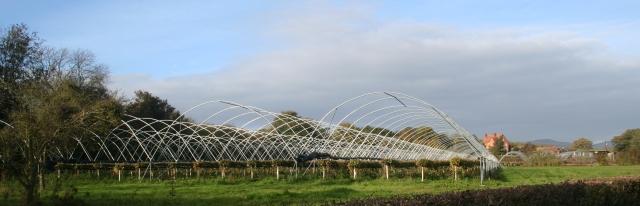 Clives Fruit Farm in November