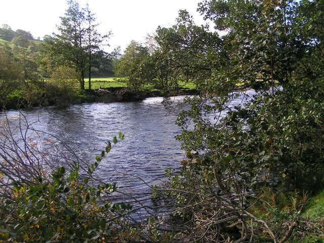 River Swale near Feetham Wood