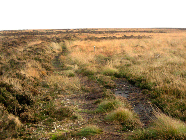 Ancient packhorse route over Beeley Moor