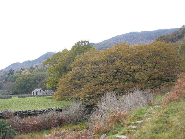 Approaching Craflwyn Hall