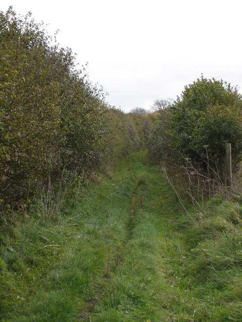 Footpath up to Gussage Hill