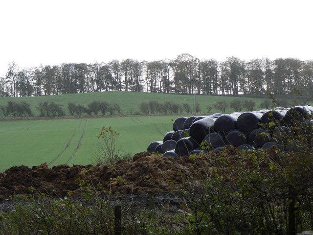 Black plastic bales