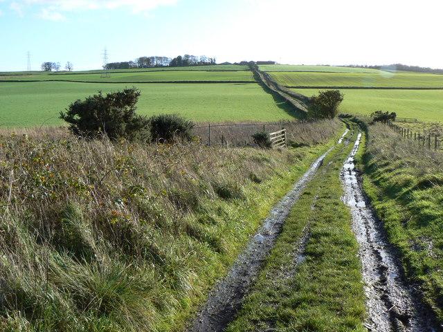 The muddy road to Pitlochie