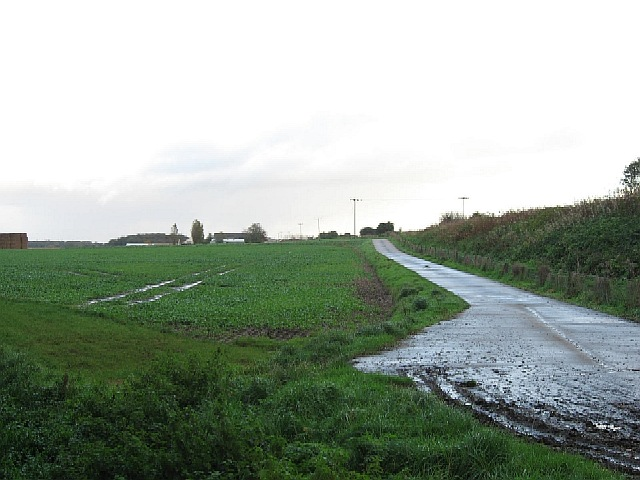 The Driveway To Whitehall Farm