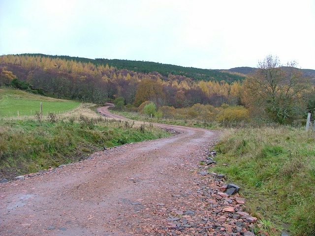 Track to Forestry Plantation