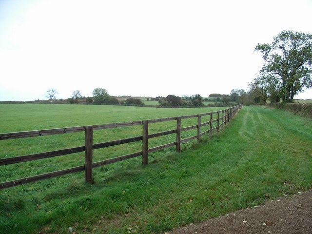 Gallops at Jackdaw's Castle